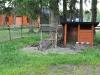 Ziegen im kleinen Campingplatz-Streichelzoo