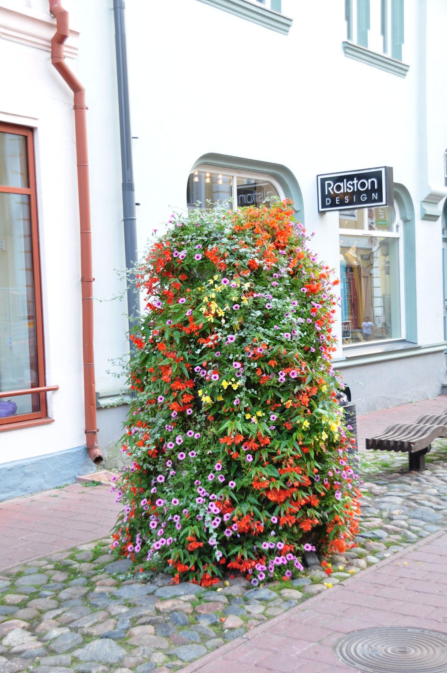 Blumenkreation
