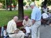 alte Männer spielen in der Allee Schach