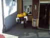 ein sicherer Platz für die Bandit auf dem Hinterhof des Hotels