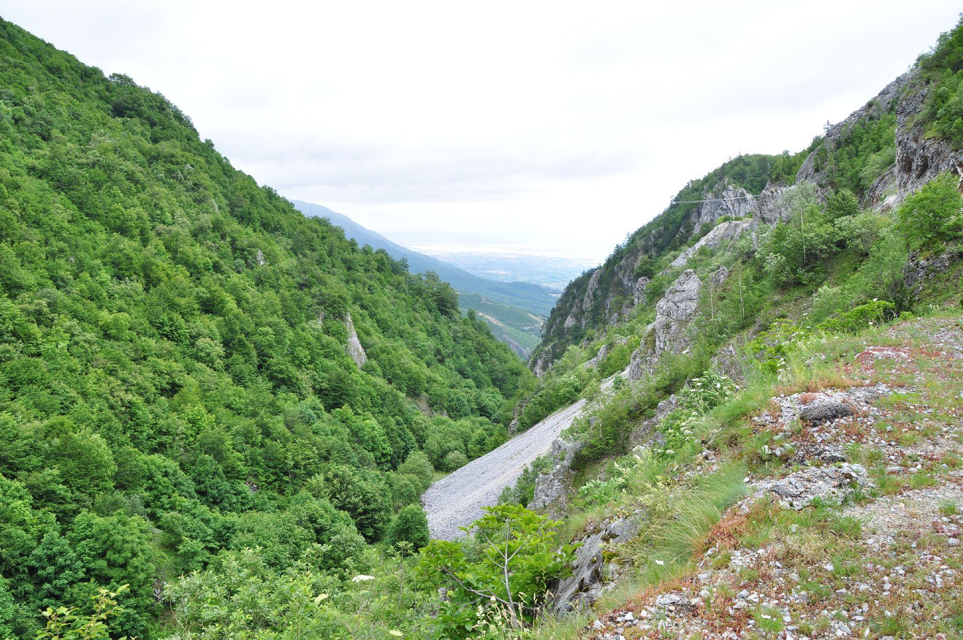 Berge, Felsen, Bäume