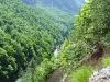 der Durmitor Canyon
